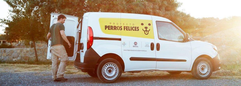 FiatPro_PerrosFelices_1_980x352